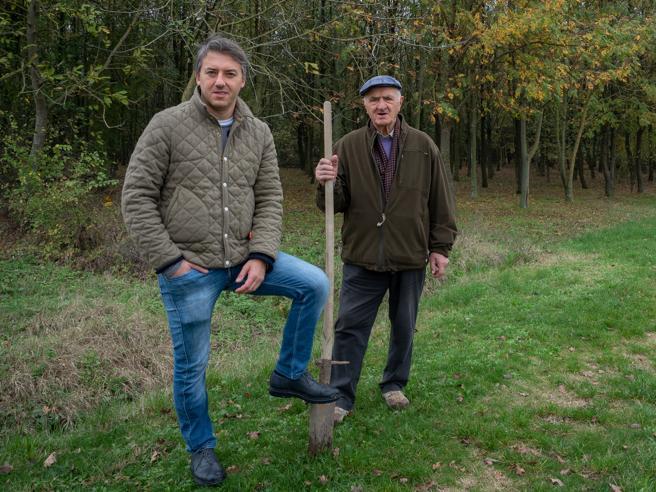 Parma: «11.000 alberi per il nostro bosco   invece di cemento» L'area sorvolata col drone: video