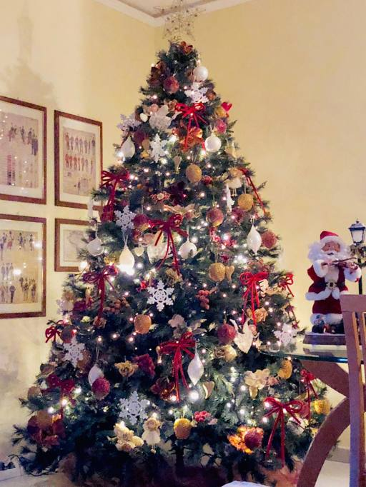 Albero Di Natale Quando Si Fa.L Albero Di Natale Ora Si Fa A Novembre Gli Alberi Di Natale Piu Belli Nelle Foto Dei Lettori Corriere It