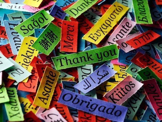 Google Translate, DeepL, Bing: qual è il traduttore online migliore? La prova