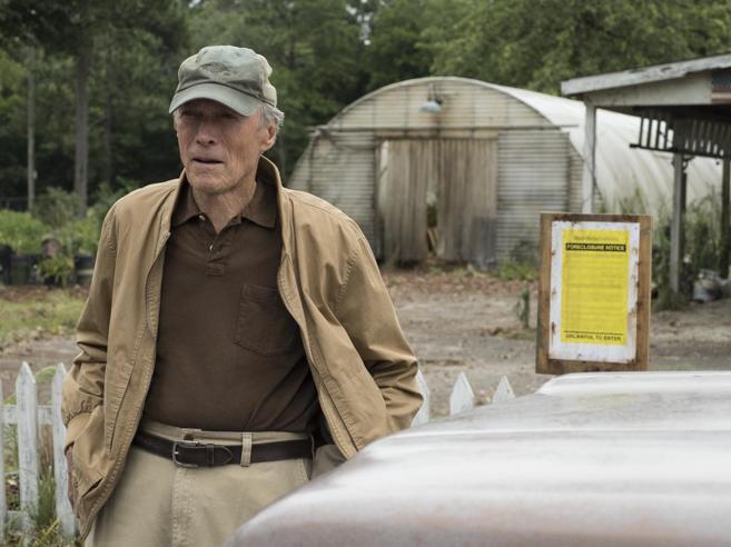 Il ritorno di Eastwood, «mulo»della droga in una storia vera