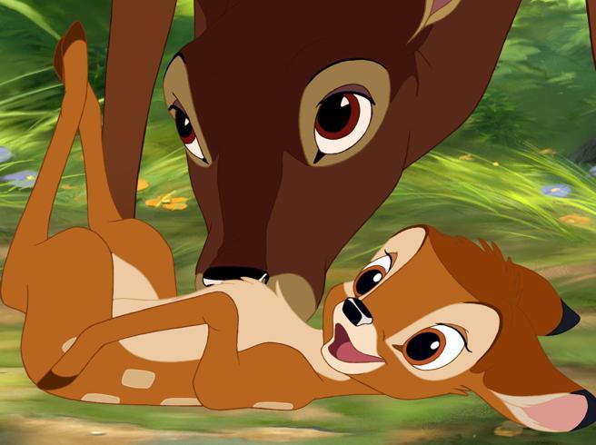 Cacciatore uccide centinaia di cervi: condannato a guardare una volta al mese il film «Bambi»