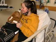 Un forte odore potrebbe ucciderla, il suo cane le salva la vita avvisandola del pericolo