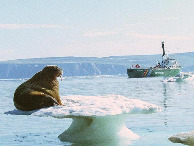 Salvare i ghiacci dell'Artico o estrarre petrolio? Il dilemma sul clima globale
