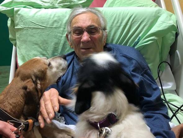 Elvio e l'ultimo saluto ai suoi due cani prima di morire. I medici: «Andava fatto»