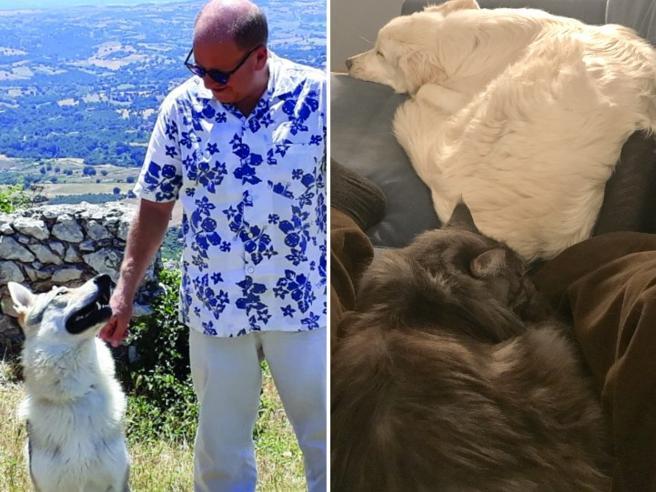 Io, Bonnie & Co: vi racconto la mia nuova vita con gli animali