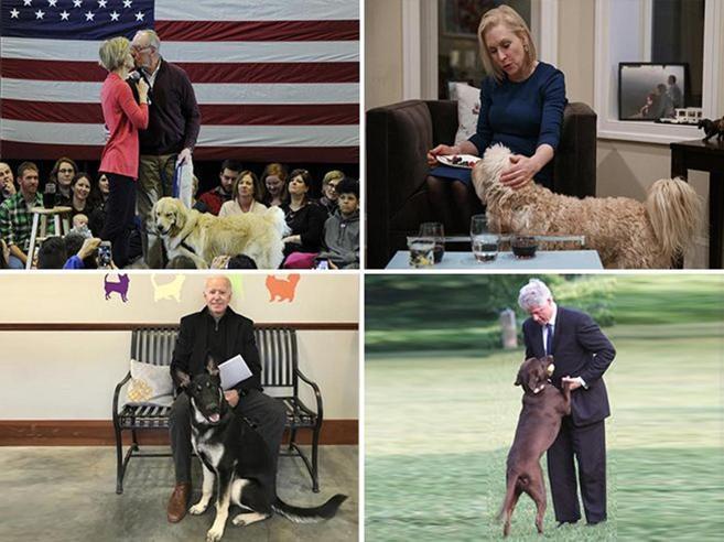 Elezioni in Usa:  democratici con i    cani   (per battere Trump)