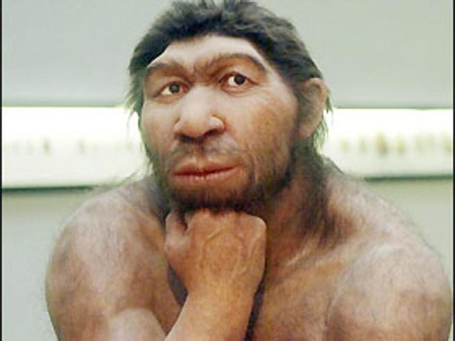 Riabilitare l'uomo di Neanderthal Aveva la schiena dritta, come noi