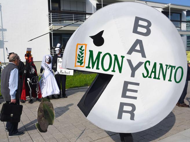 Bayer perde la seconda causa sul glifosato e crolla in Borsa (-12,5%)