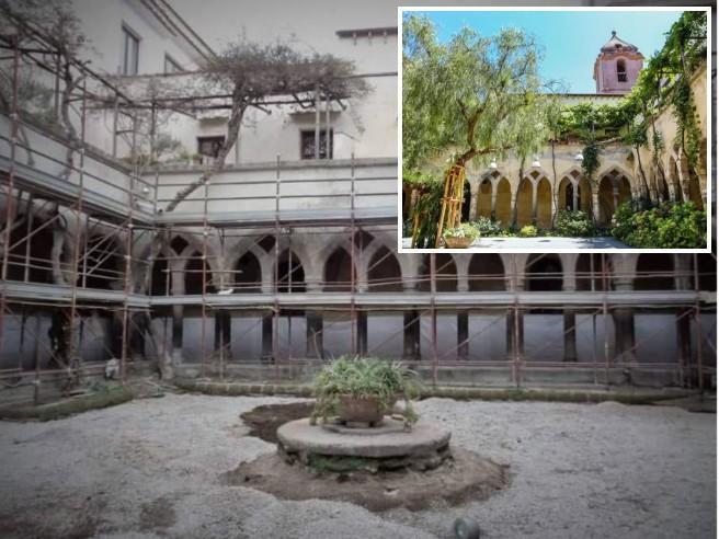 Tagliato l'«Albero Storto» di Alberto Angela a SorrentoIl Comune: «Era pericoloso»