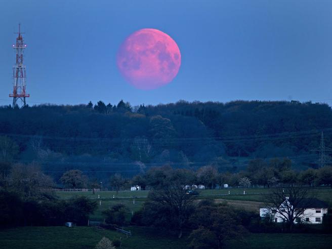 Luna rosa, da venerdì a Pasquetta: ecco come vederla (ma il colore non c'entra)