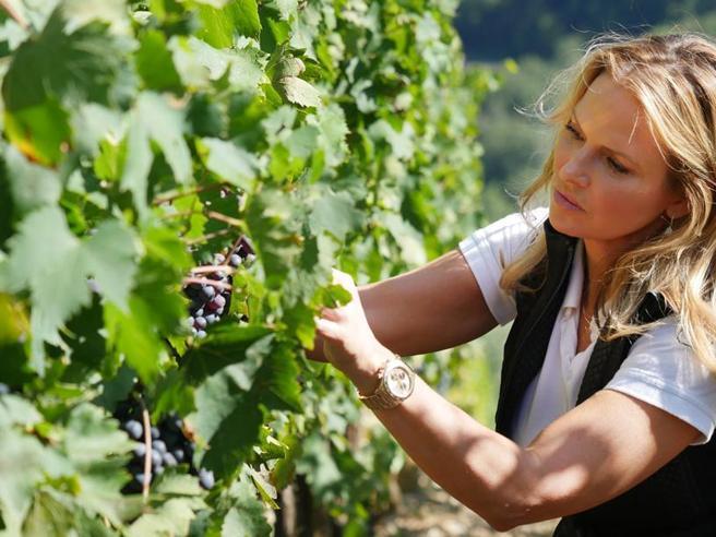 La seconda vita di Natalie: Brunello e un vino segreto Film hard? Mai più