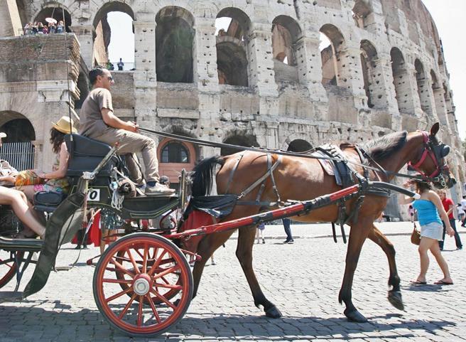 Carrozze a cavalli e slitte con cani, tolti i divieti a tutela degli animali