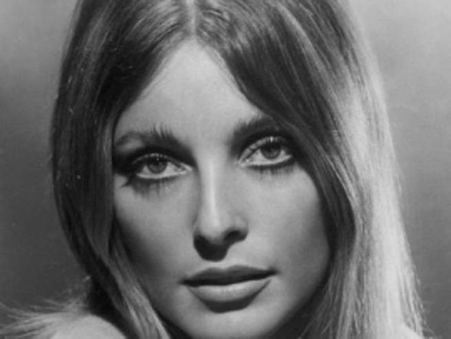 Sharon Tate, cinquant'anni fa l'omicidio della setta di Manson: la storia e i segreti