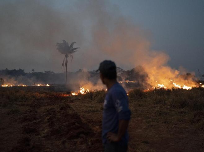 Le foto finte  in Rete per salvare l'Amazzonia (ma l'emergenza incendi è grave e reale)