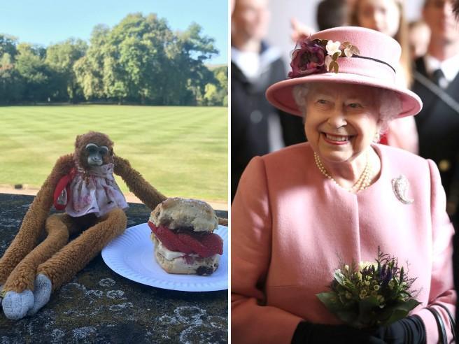 Una bimba perde la scimmia di pezza a Buckingham Palace, così la scuola scrive alla Regina (e viene ritrovata)