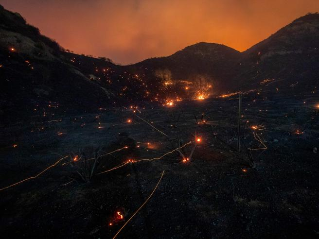Incendio devasta i boschi di Los Angeles: 100.000 evacuati| foto