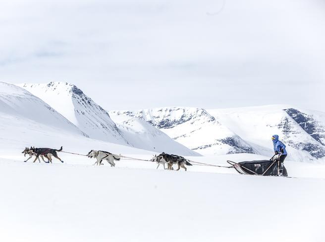 Così si può vincere un viaggio estremo (con slitta e cani) al Polo Nord: il concorso per tutti