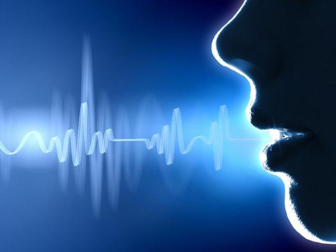 Gli assistenti vocali ci ascoltano anche nei momenti intimi: ecco come evitarlo