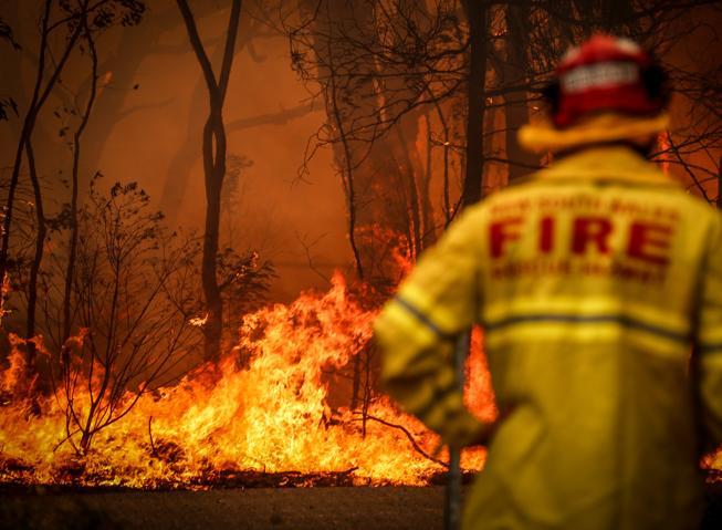 Australia, gli incendi circondano Sydney. Brucia un'area grande come il Belgio