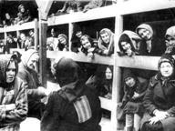 Auschwitz, l'incredulità degli Alleati dinanzi ai primi racconti dell'orrore