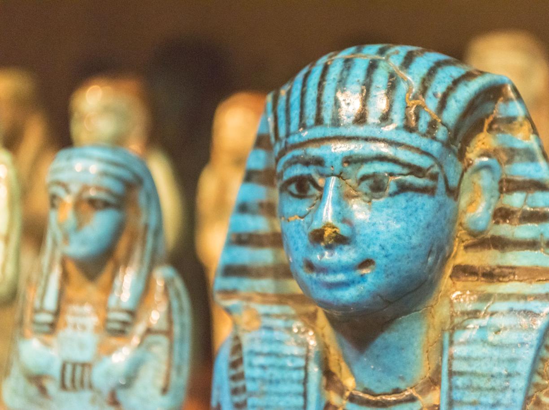 Automunito, con la patente B per gestire il Museo Egizio