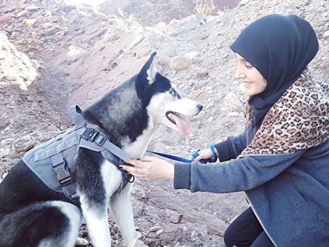 «Una donna non può avere un cane»: sparano al suo husky per punirla,  l'atleta lascia l'Afghanistan