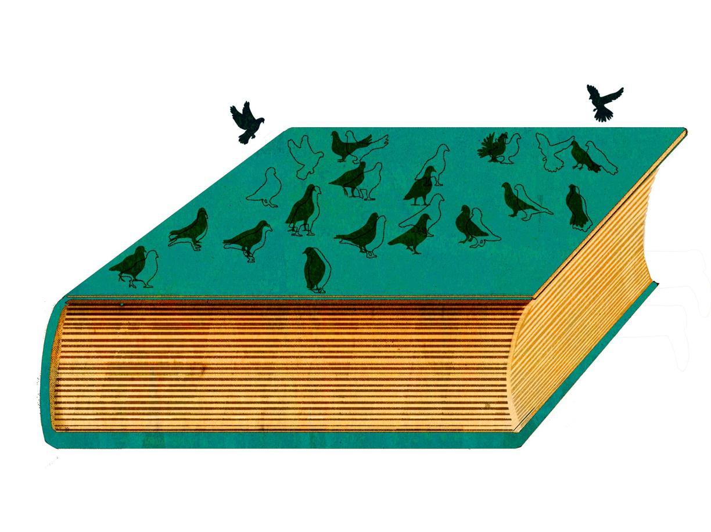 Se al «Sale della terra» manca il sale della letteratura