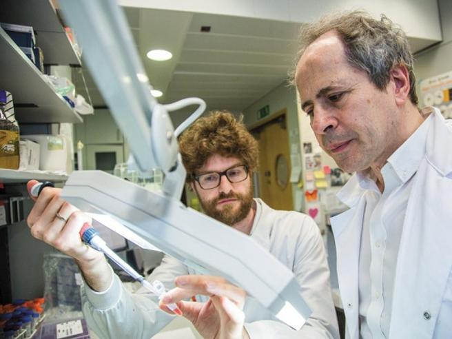 Coronavirus, Crisanti: «Mascherine anche in casa. Riaperture? Ultima la Lombardia, prima la Sardegna»