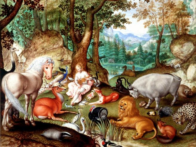 Il monito di scienziati e filosofi: «Il Pianeta non ha futuro se non avremo rispetto per gli animali»