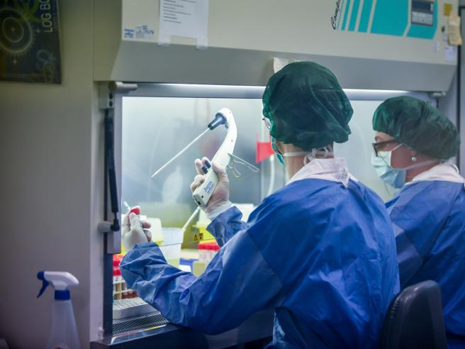 Coronavirus, pronto il primo test italiano per la patente d'immunità