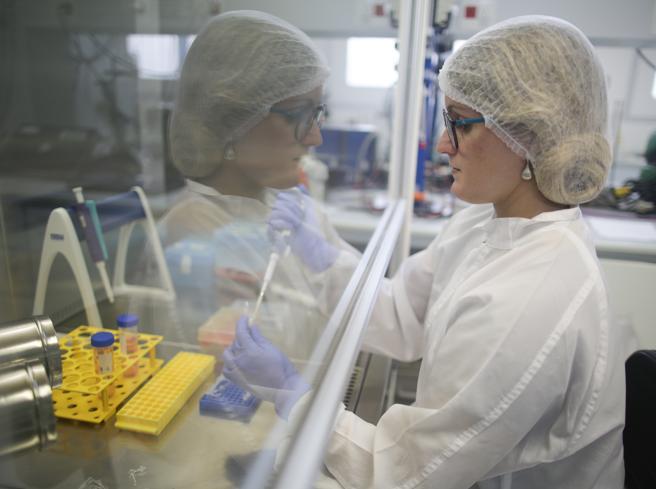 Coronavirus, 30 studi sul vaccino nel mondo. Quale ricerca è più vicina alla meta?