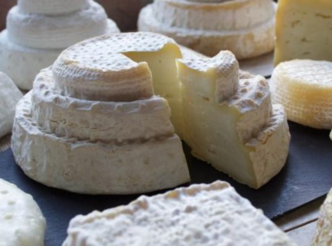 «Adotta una pecora» e salva il Montébore, il formaggio più raro