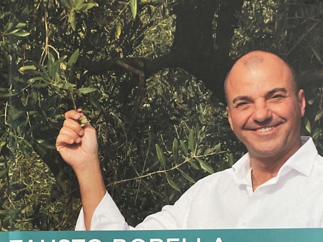 Terre d'olio 2020, la guida ai migliori extravergini d'Italia
