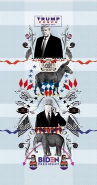 Gli Stati Uniti verso il voto, una missione impossibile?