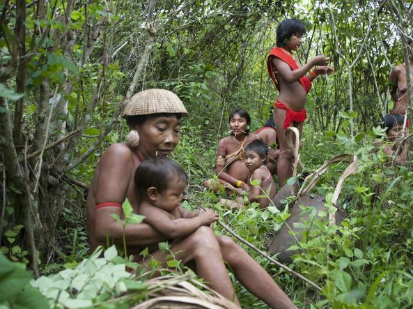 Una famiglia di indios Yanomami (foto Fiona Watson/Survival International)