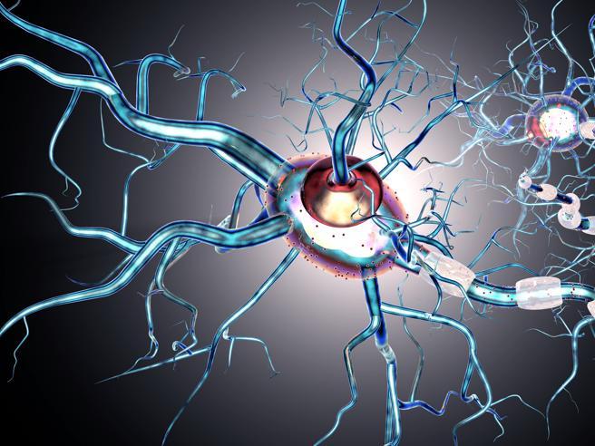 Il rischio di ammalarsi di sclerosi multipla è più alto tra chi vive in città