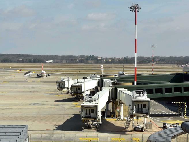 «Italian airports need 800 million, low cost vital for the relaunch»