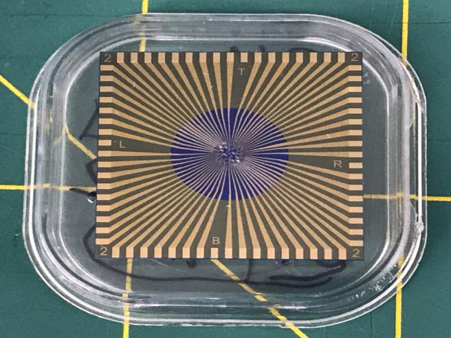Allo studio un sensore in grafene per distinguere il Covid-19 dall'influenza
