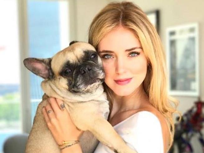 Chiara Ferragni: «Matilda, il nostro cane, sta male». L'annuncio sui social