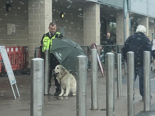 La guardia giurata ripara il cane dalla pioggia con un ombrello: la foto fa il giro del web