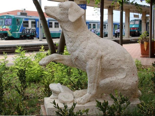 La storia di Lampo, cane-star delle stazioni anni Cinquanta