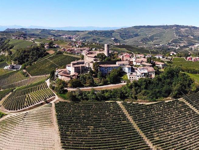 In volo sulle vigne del Barolo, le mappe del vino ridisegnate con un drone