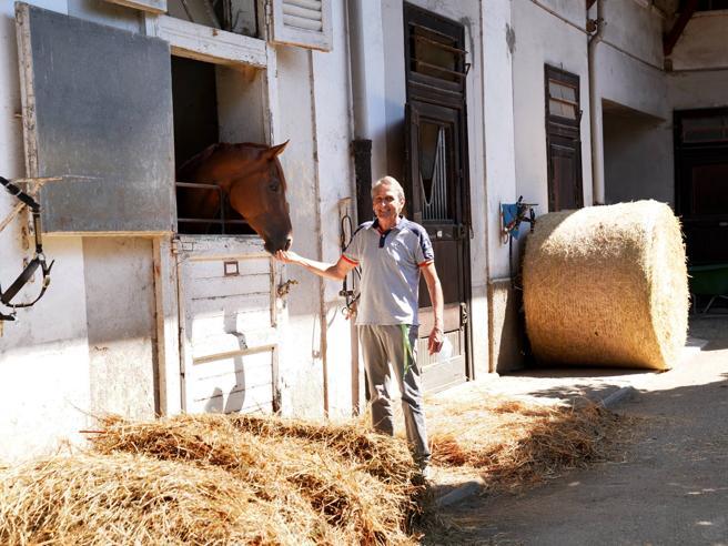Muro contro muro all'IppodromoPartono gli sfratti per 450 cavalli