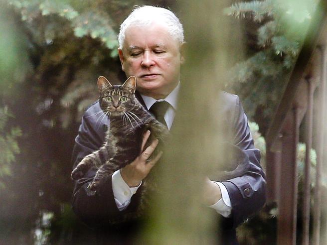 Kaczynski «il gattaro» e la guerra dei visoni: balla il governo polacco