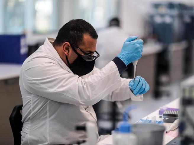 Il vaccino di Oxford genera una forte risposta immunitaria negli anziani