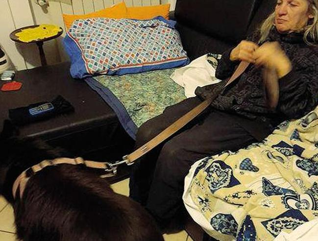 Elena sfrattata da casa con il suo cane La gara per ospitarla