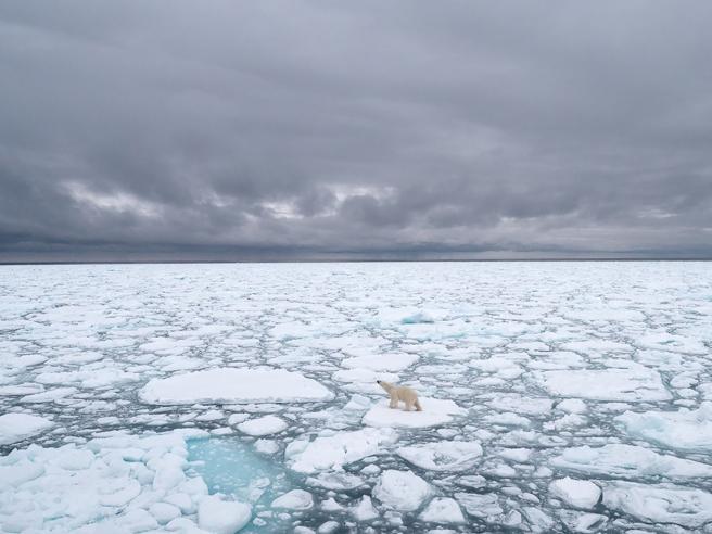 2020 ، گرمترین سال در تاریخ قطب شمال ، می سوزد: + 6 درجه در طول 30 سال