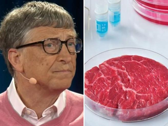 Bill Gates: «I Paesi ricchi dovrebbero mangiare solo carne sintetica. Ecco perché»