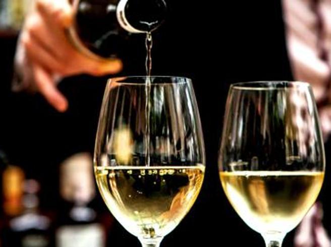 I 20 migliori vini al mondo (sotto 20 euro) secondo il New York Times: cinque sono italiani