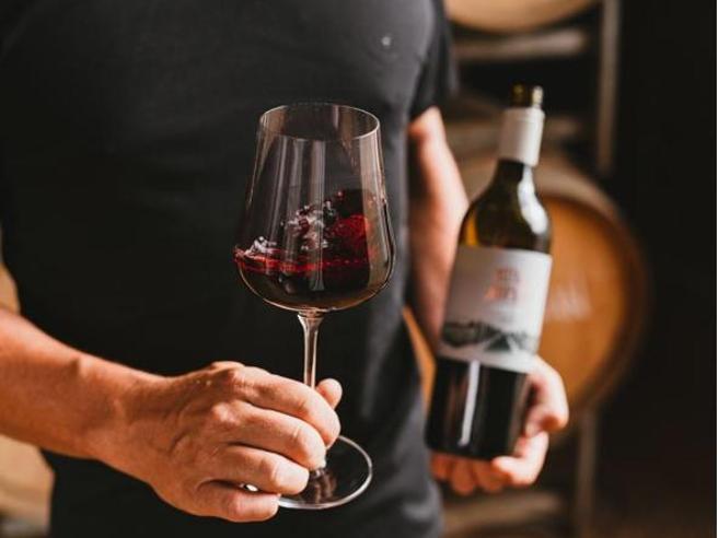 I migliori 10 vini rossi italiani secondo i giudizi di tutte le guide